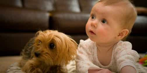 Teaching your kids to care for pets can help their development