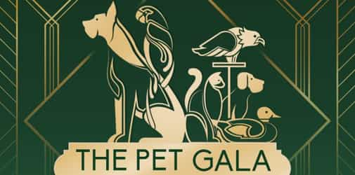 Roll Out the Red Carpet! There's a MET Gala Inspired PET Event at Eastwood City