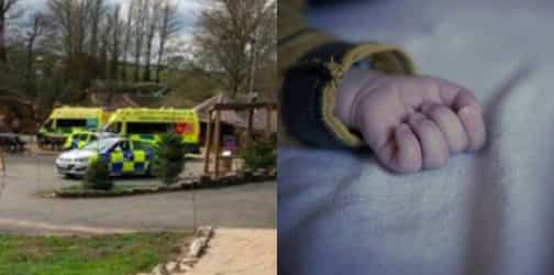 2-month-old's death highlights dangers of cardiac arrest in babies