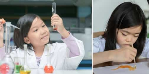 STEM vs STEAM: Which One Is Best For Your Child?