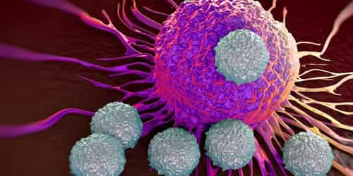 Scientists Have Discovered A New Cancer Treatment Breakthrough - An Immune Component That May Treat All Cancers