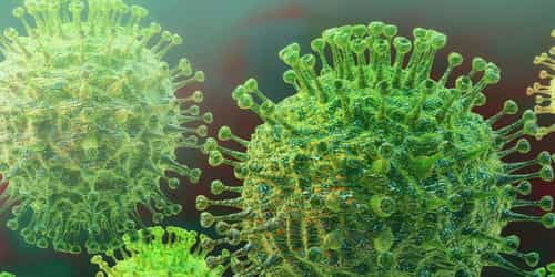 This Is How Coronavirus Affects The Human Body After Infection