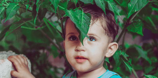 Toddler Development And Milestones: Your 25 Month Old