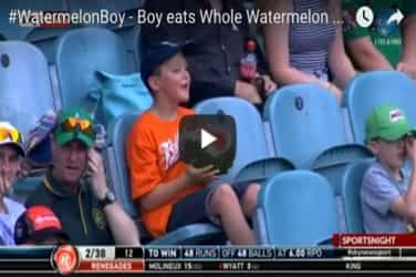 Video of boy attempting to eat whole watermelon at cricket match goes viral