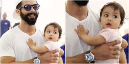 The REAL reason dad Shahid Kapoor has taken Misha on her first international trip!
