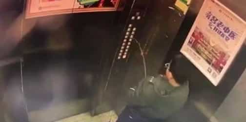 This kid decides to pee on lift panels. Guess what happens next!