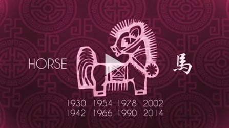 Will 2015 be lucky for you: The Horse Zodiac