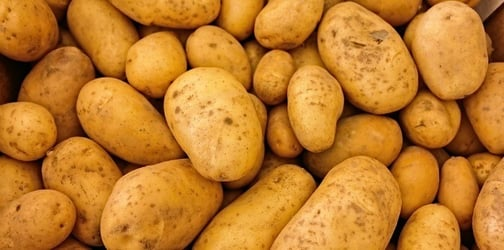 Find out why you should never store potatoes in the fridge
