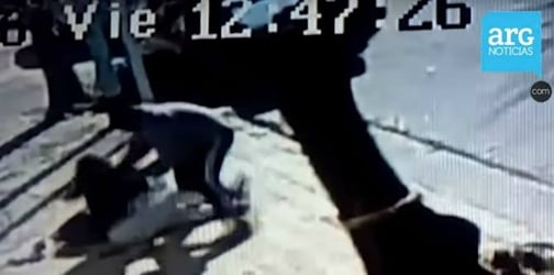 Stranger tries snatching baby from mom walking down the street