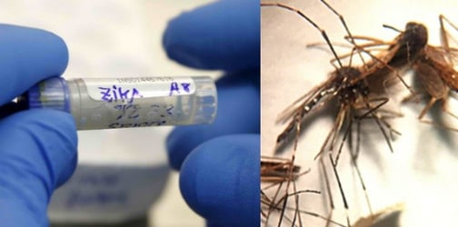 Woman tests positive for Zika virus in the Philippines