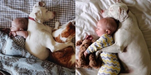 LOOK: These photos of a baby cuddling with his dog will melt your heart