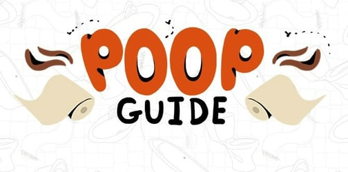 The ultimate color-coded baby poop guide