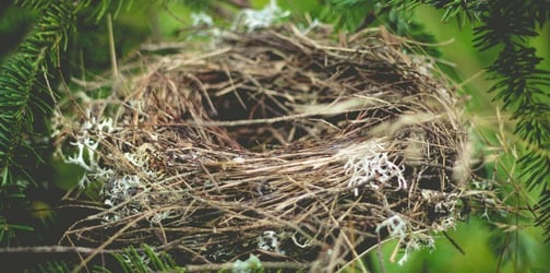 How can you deal with empty nest syndrome?