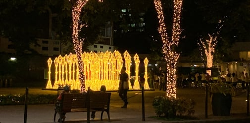 """Take insta-worthy pics at the """"Lights at the Park"""" this holidays"""
