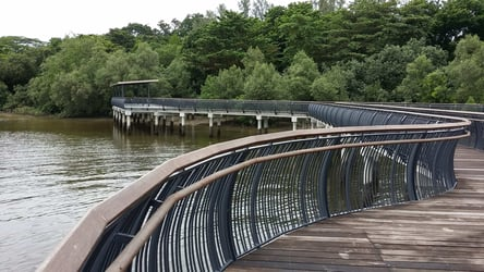 You'll Never Run Out Of Things To Do At Sungei Buloh Nature Park!