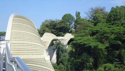 Henderson Waves - The Only Bridge With Sculptural Structure!
