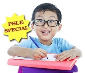 Working with your child's learning style - Maximise potential for PSLE