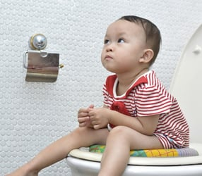 How to take your toddler from the potty to the loo