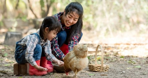4 Of The Best Child-Friendly Farm Stays In Perth