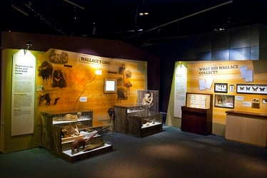 Island Adventurer: An evolutionary excursion at the Science Centre!