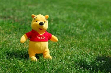 Revealed: Winnie the Pooh is a girl!