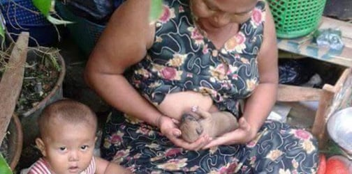 Breastfeeding Animals By Humans: The Milk Of Human Kindness?