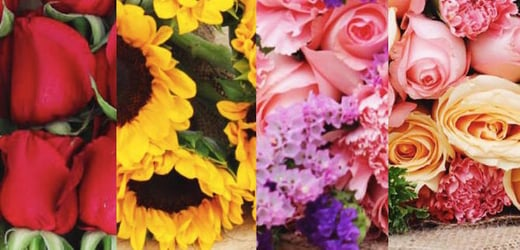 We have a winner: Win a bouquet of gorgeous flowers for Valentine's Day!