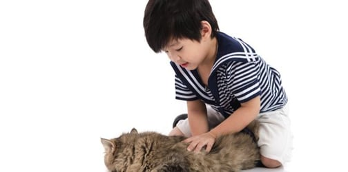 How children benefit from having pets from birth