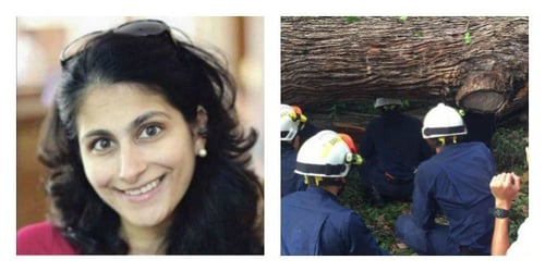 Mother of twin babies killed in tragic Singapore Botanic Gardens tree accident!
