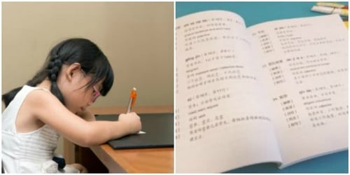 """""""Is my child eligible for Mother Tongue Language exemption in Singapore primary schools?"""""""