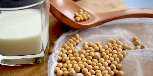 Soy As A Milk Alternative: Pros And Cons Of Using Plant-Based Milks