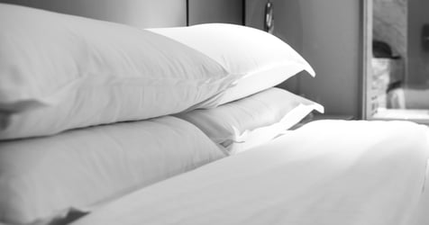 Don't Let Bed Bugs Ruin A Good Night's Sleep!