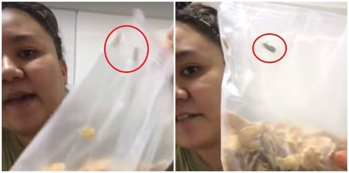 Singaporean horrified by bugs in cereal, goes LIVE on Facebook to prove infestation!