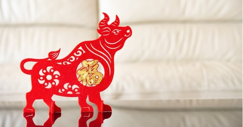 Which Chinese Zodiac Has the Best Financial Outlook In 2021?