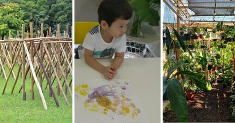 Enjoy Family-Friendly Walks, Workshops, And Exhibitions At NParks - All For FREE!