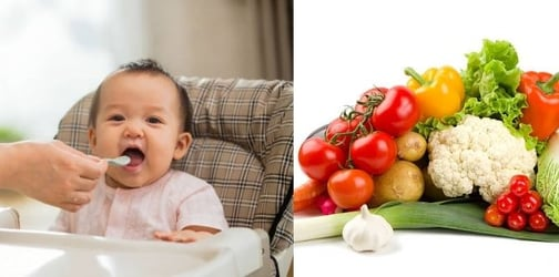 Best Vegetables For Babies (0-1 Year): A Helpful Guide For Parents