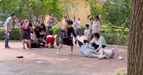 No Joke: Family Feud At Beijing Wildlife Park Sparks Animals To Fight Too