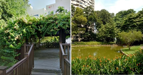 14 Of The Best Hidden Green Spaces And Nature Parks In Singapore