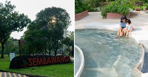 7 Fun Things To Do At Sembawang With The Entire Family