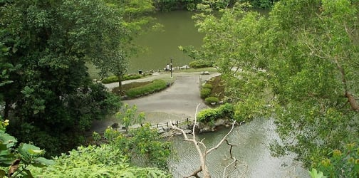 5 Park Connector Loops In Singapore That You Must Check Out