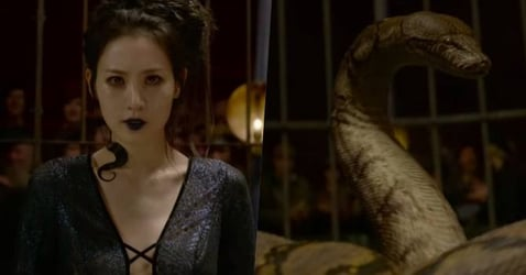 The Fantastic Beasts 2 Trailer Just Revealed That Nagini Is An Asian Woman, And Fans Aren't Happy