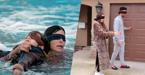 Please, For The Love Of All That Is Good, Don't Do The Bird Box Challenge