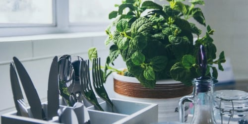 How to grow 7 essential Asian herbs right in your own home