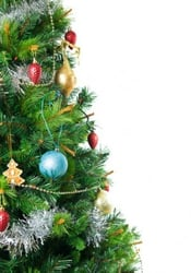 """Decorate the """"Pine of Hope"""" for charity"""