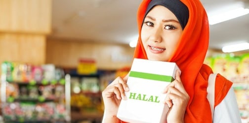 Halal Snacks For Kids When Traveling Abroad