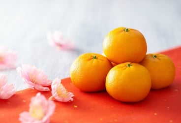 Auspicious foods for the Chinese New Year