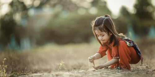 The Foundation Of Resilient Children: A Simple Guide To Understanding Pre- And Probiotics