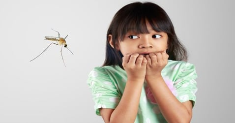 11 tips to deal with dengue before it strikes