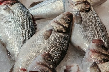 A guide to eating fish during pregnancy
