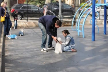 Must-Watch: Social experiment shows how easy it is to abduct children